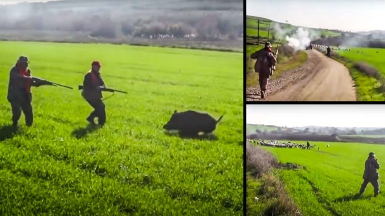 El vídeo de los dos cazadores abatiendo al jabalí en el peligroso lance. © YouTube