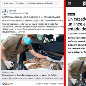 Una página animalista aplaude (sin saberlo) el gesto de un cazador que salvó a un lince