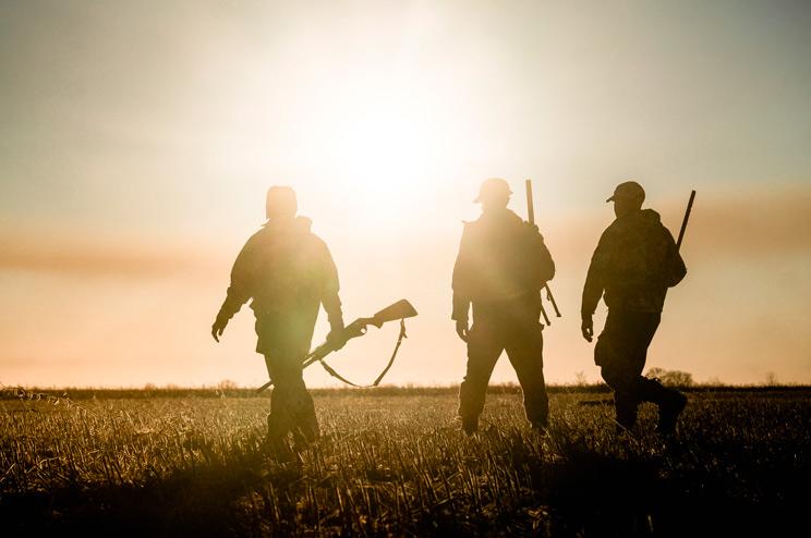 cazadores atardecer