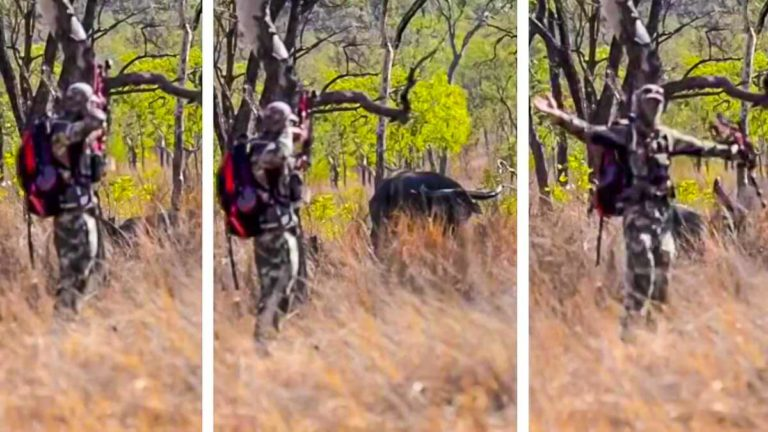 cazador con nervios de acero