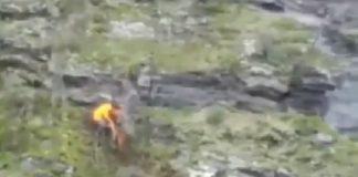 cazador se juega la vida por salvar la de su perro