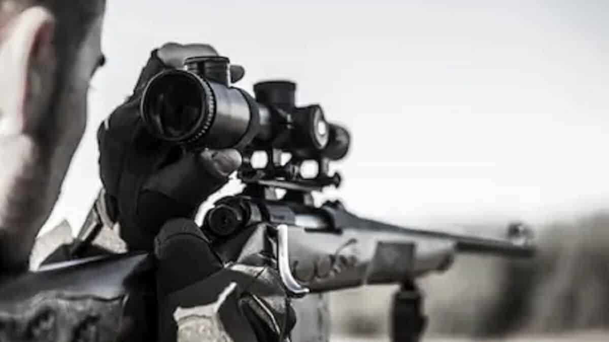 La Diputación de Vizcaya pagó a un profesional por matar 16 corzos y 6 jabalíes durante el confinamiento