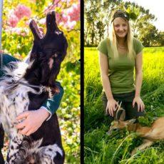 Alemania sí castiga el odio animalista: ya hay 50 condenados por insultar a una cazadora en Facebook