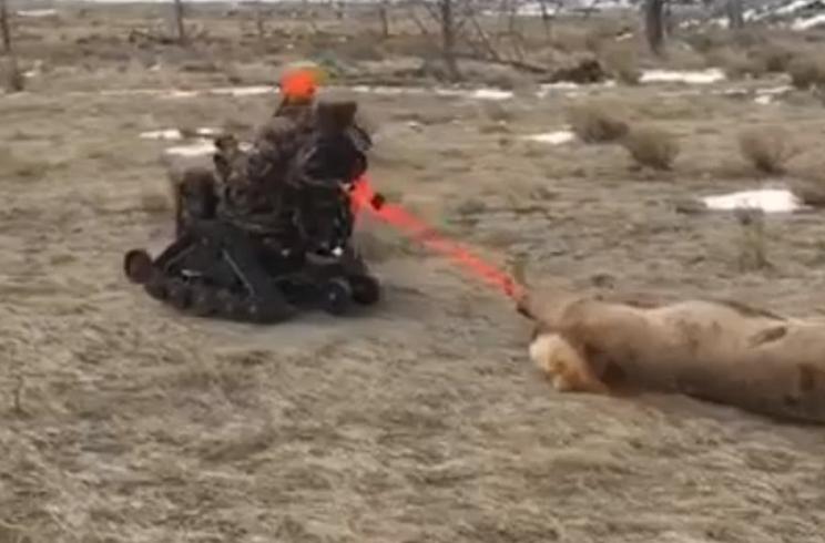 Así se las ingenia una cazadora discapacitada para sacar una cierva del monte