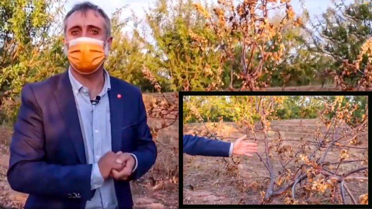 El diputado de Ciudadanos, durante el vídeo