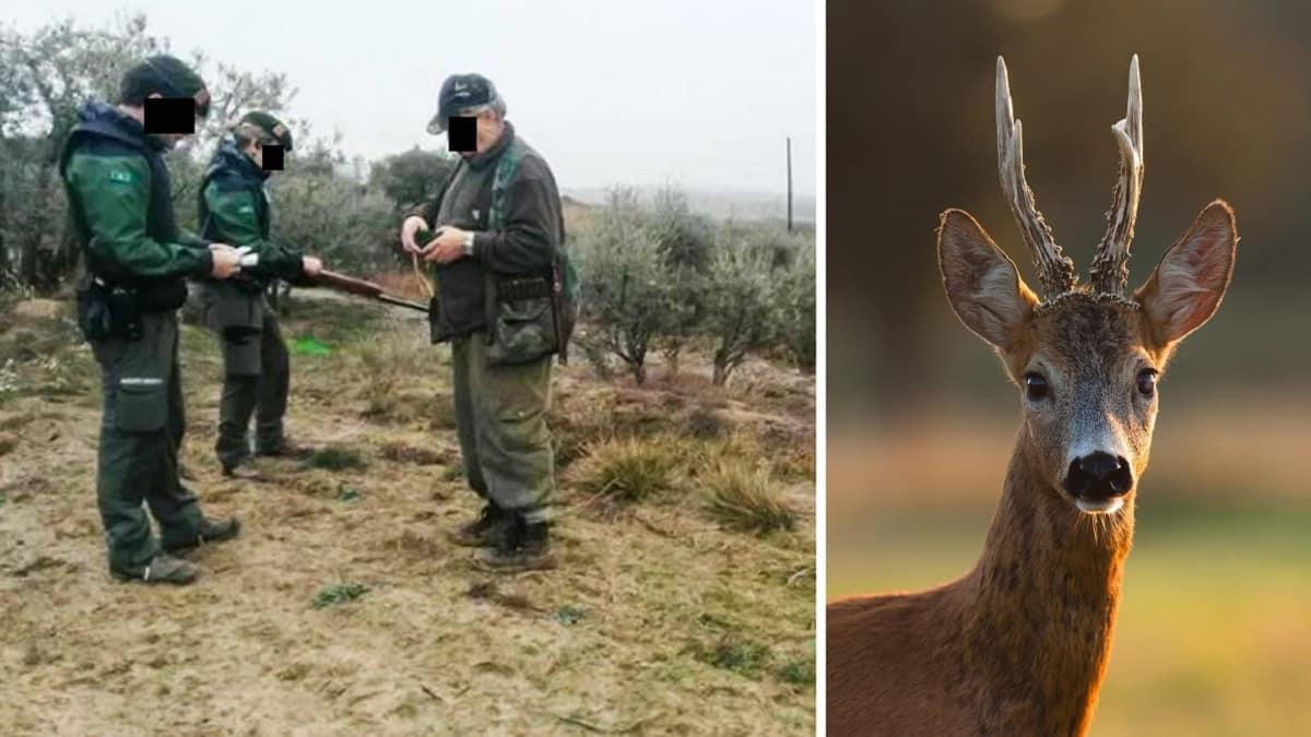 Los cazadores catalanes estallan por la «traición» de la Generalitat: el corzo no se prorrogará