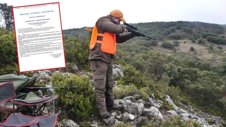 batida jabalíes cazador apunta examen Francia
