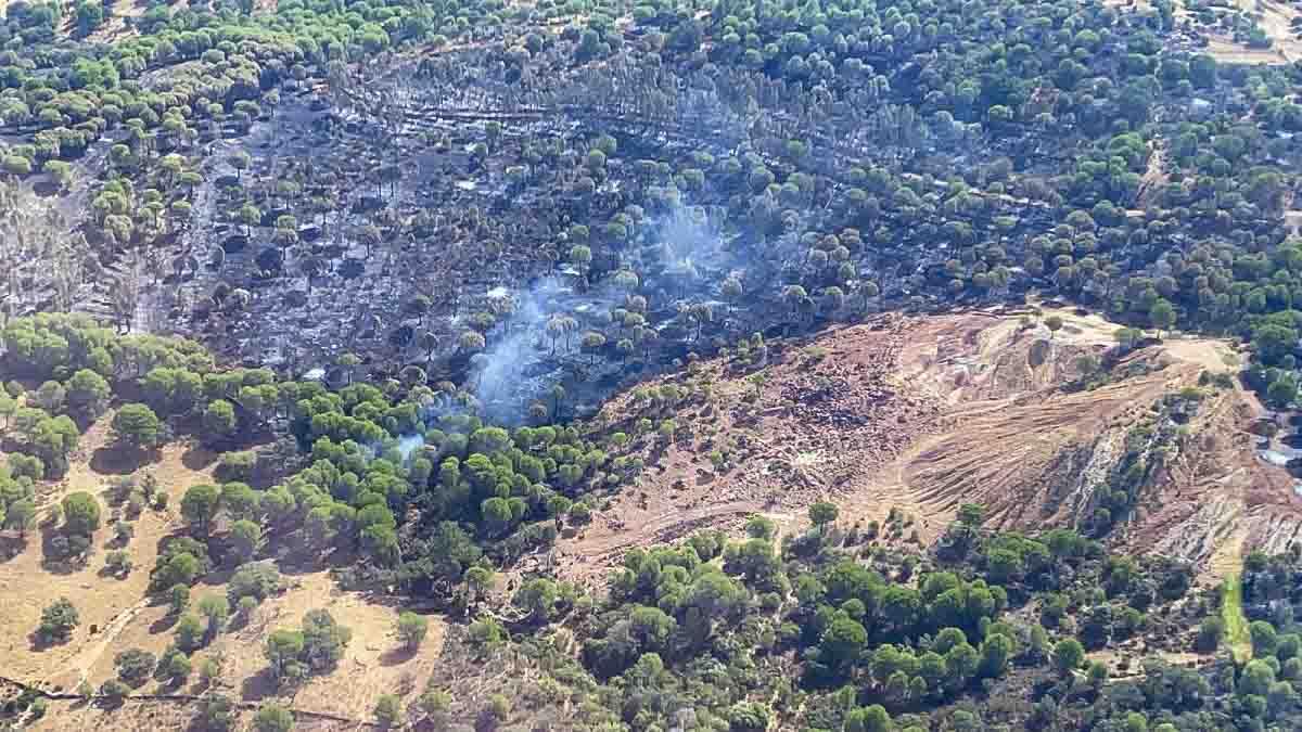 Los cazadores participarán en el plan de recuperación de la Sierra de Huelva tras los incendios
