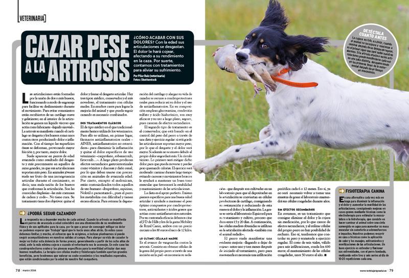 cazar-artrosis