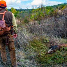 Respuesta a las principales dudas sobre cazar y pescar durante el estado de alarma en CLM