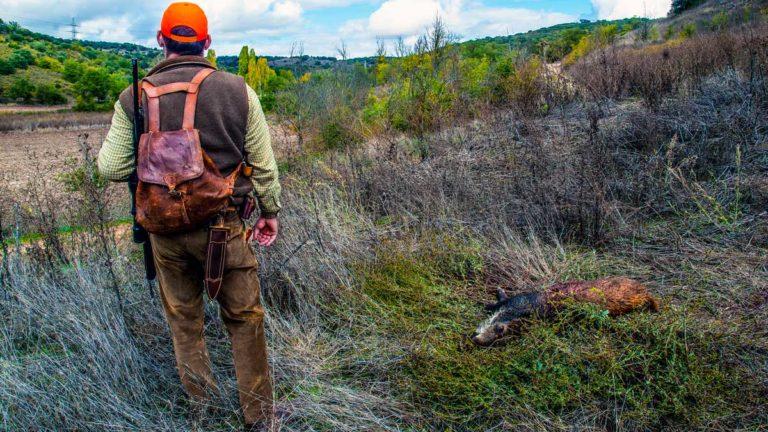 estado de alarma toque de queda confinamiento caza Castilla-La Mancha