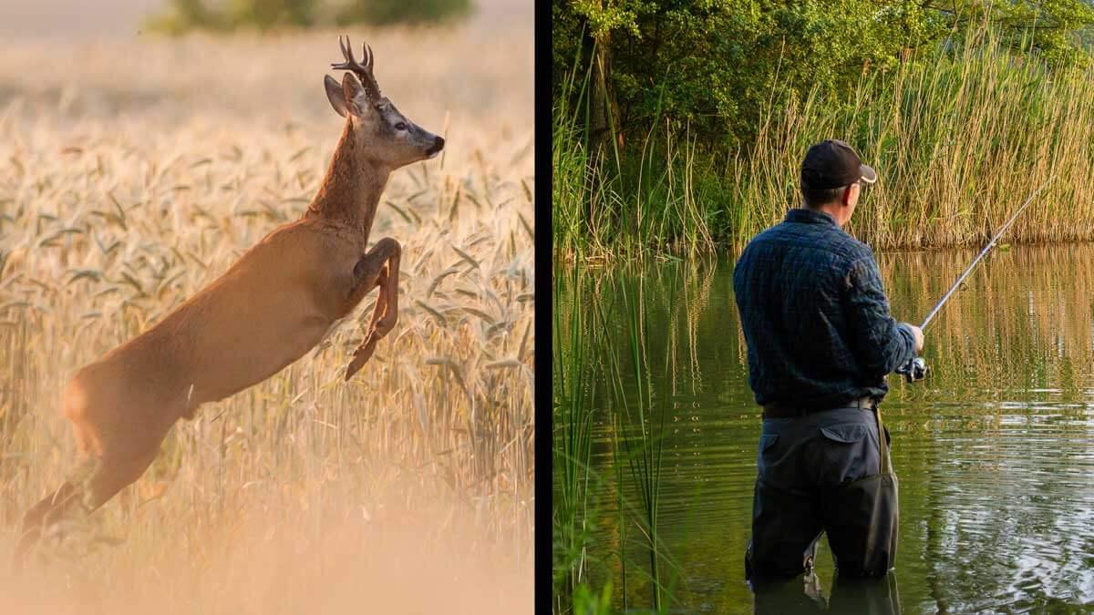 ¿Puedo ir cazar o pescar a otra provincia durante la fase 3?