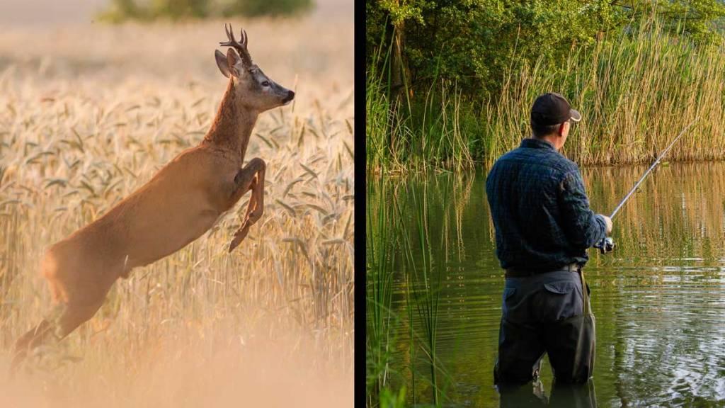 Un corzo y un pescador. /Shutterstock