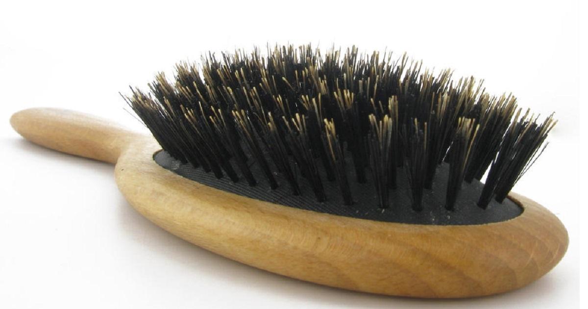 ¿Por qué los cepillos de cerdas de jabalí son tan buenos para el pelo?