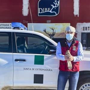 Un cazador rescata un ave protegida en Toledo y se la entrega a los agentes medioambientales