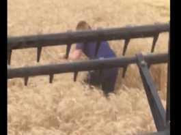 chica cosechadora.