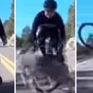 Un ciclista sufre un fatal accidente al cruzársele un ciervo