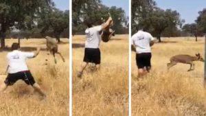 Un cazador rescata a una cervatilla atrapada en una valla cuando llevaba agua a la fauna salvaje