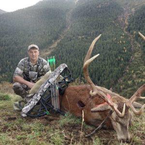 Caza un bonito venado en Pirineos en un apasionante lance con arco que graba en vídeo