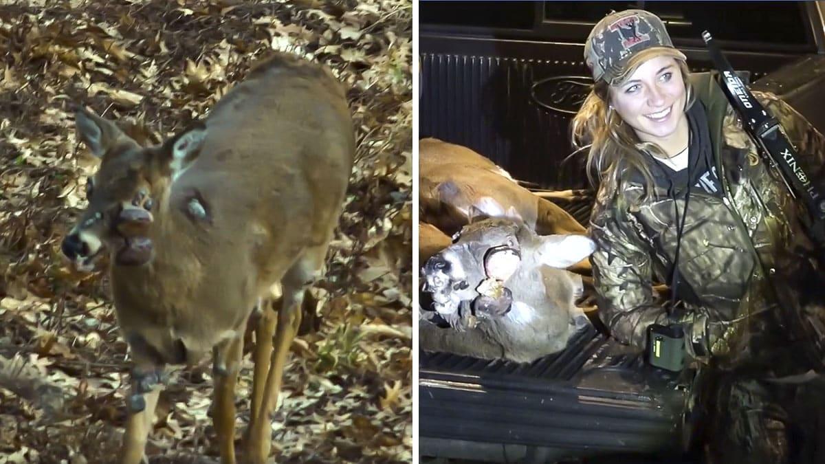 Una chica caza a un espantoso ciervo lleno de tumores