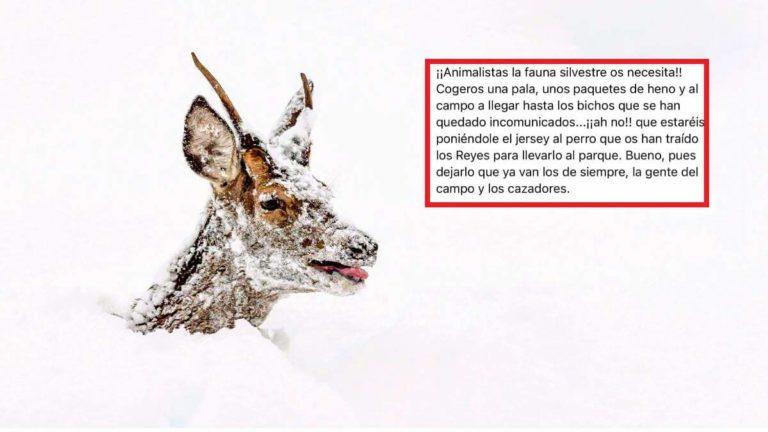 El mensaje viral junto a la imagen de Marcos Fidalgo. © M.F.