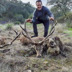 Un puesto de ensueño: caza dos ciervos de 14 puntas y dos jabalíes en una montería en abierto