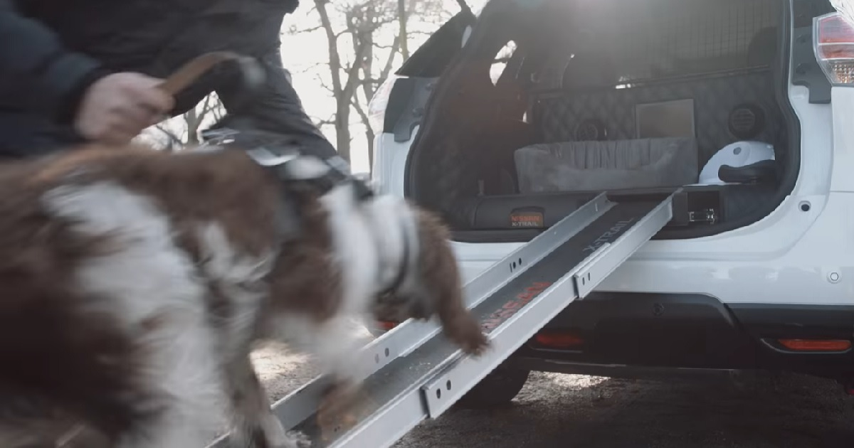 Diseñan un coche totalmente adaptado para salir al campo con tu perro