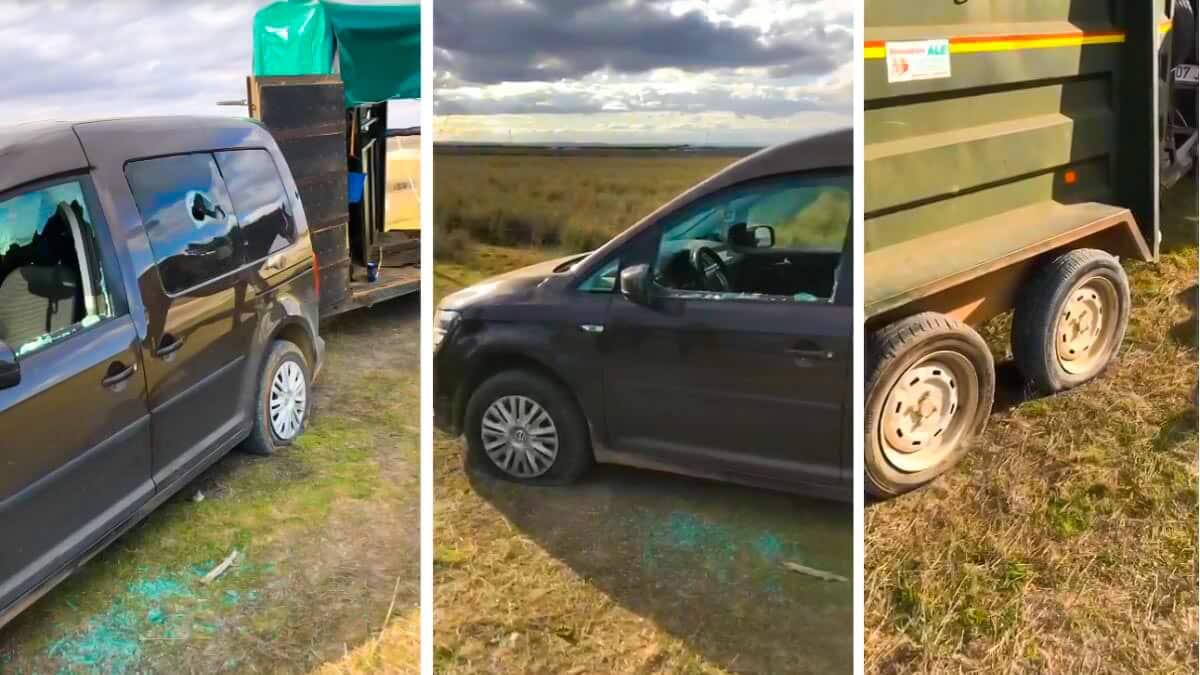 Destrozan el coche de un juez durante un campeonato de caza liebres con galgos en Albacete