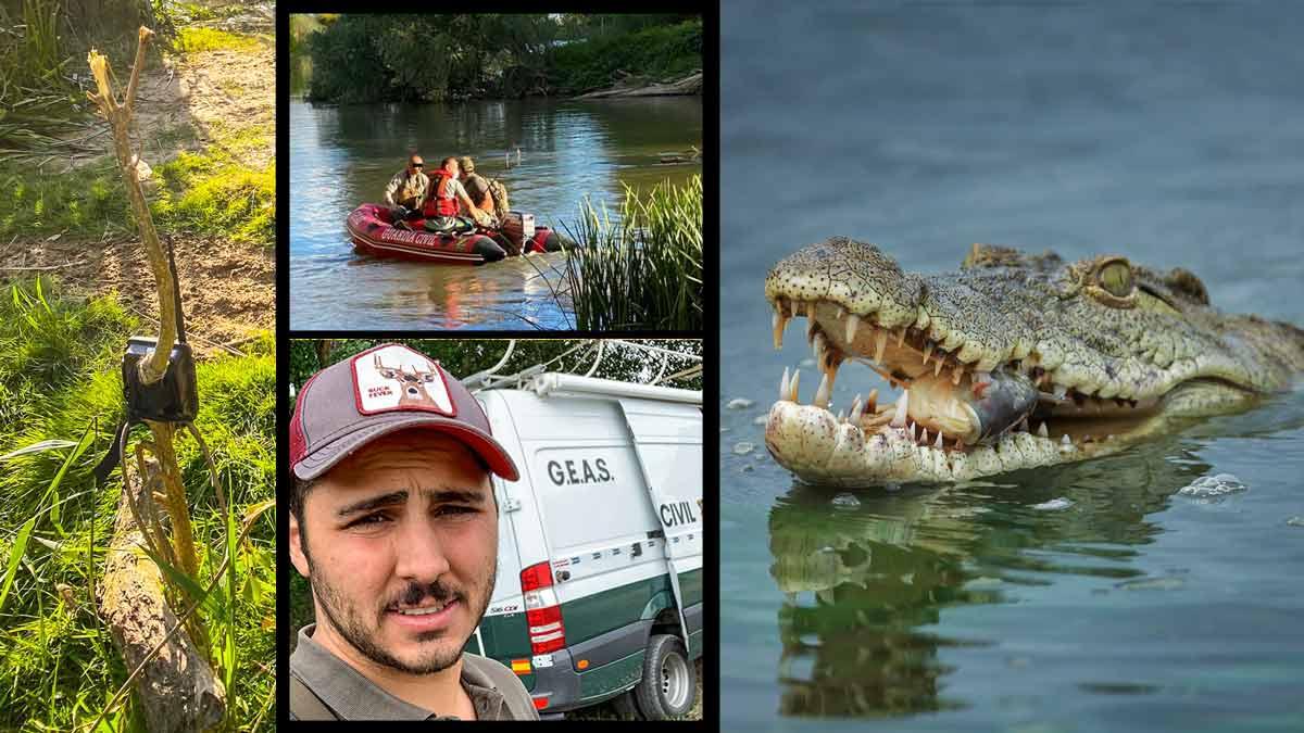 Con un corzo como cebo y cámaras trampa: así ha ayudado este cazador a buscar el cocodrilo de Valladolid