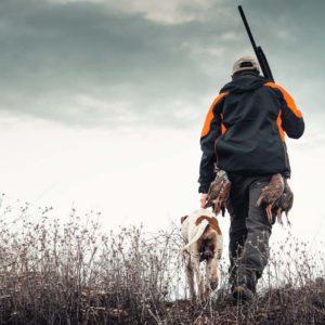 Cómo cazar perdices salvajes en solitario (en el monte)
