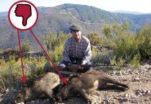 como hacer fotos de caza