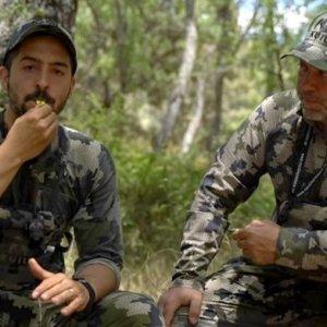 ¿Cómo atraer corzos con un reclamo bucal? - El Blog de Kuiu