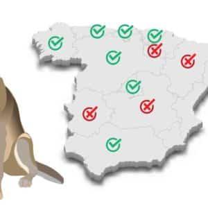 Varias comunidades donde nunca habrá lobo votaron a favor de prohibir su caza (Melilla, Baleares, Canarias...)