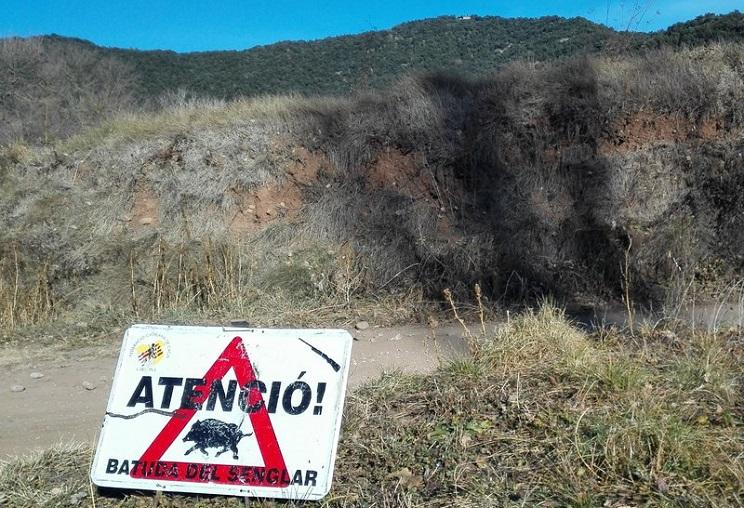 Condenados los organizadores de una batida de jabalí por la muerte de un cazador