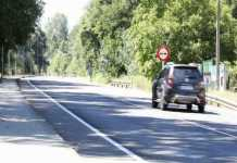conductor choca con un jabalí
