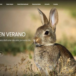 Hoy, gratis en Cazaflix, Conejos en verano