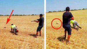 La caza de este conejo a 'perro puesto' arranca las carcajadas de los cazadores