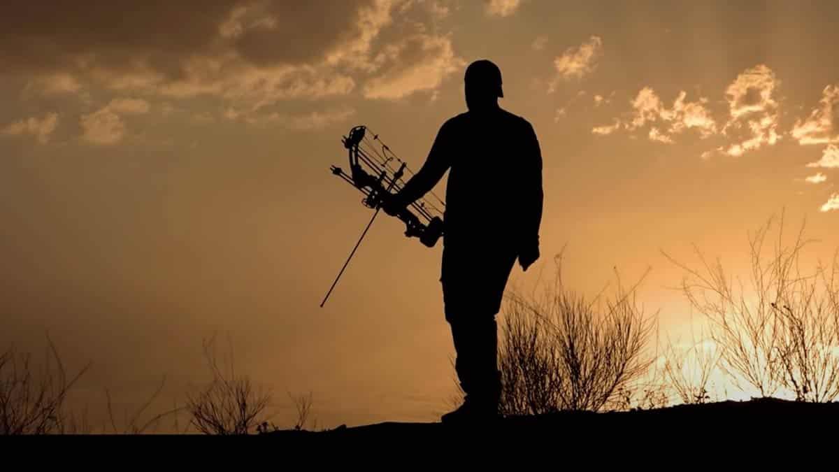 La caza en Cataluña no se paraliza: así se podrá cazar durante el estado de alarma