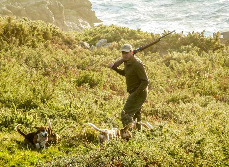 Otra imagen del autor cazando conejos con beagles. © Innova Ediciones
