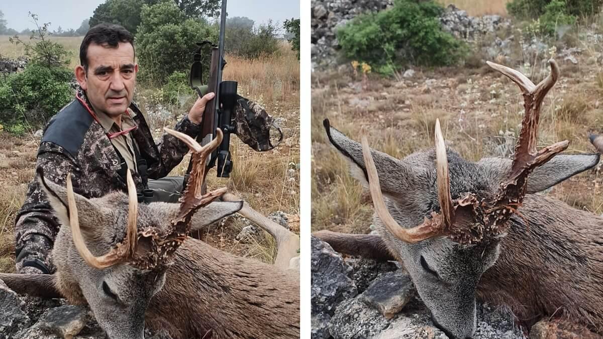 Le invitan a los corzos y caza uno de los más raros de la temporada en Teruel