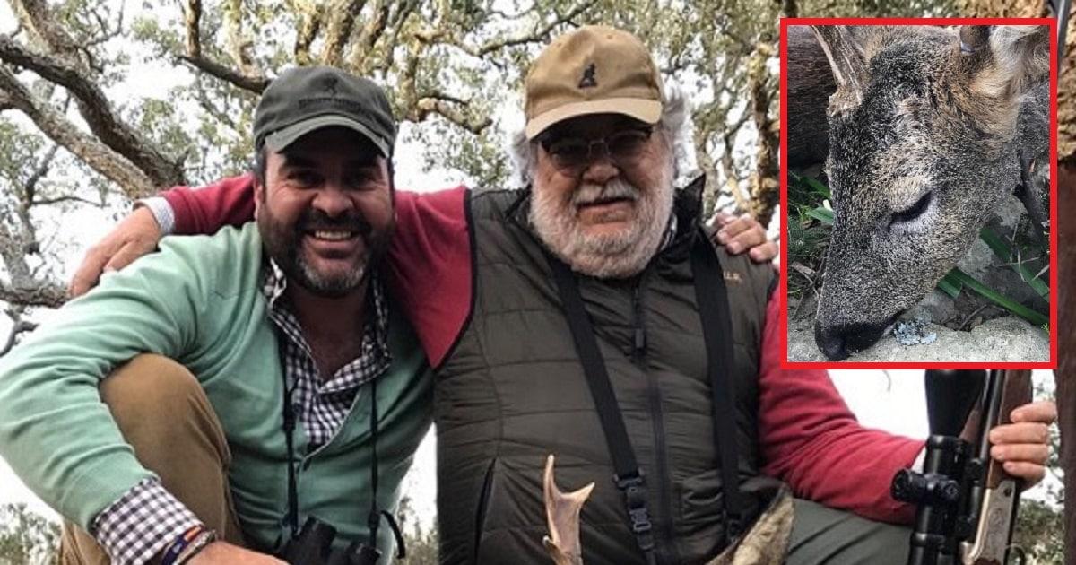 Cazan un curioso corzo unicornio en la sierra de Cádiz