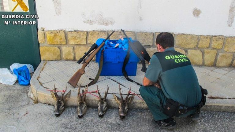 Un agente del Seprona con los corzos hallados en Soria.