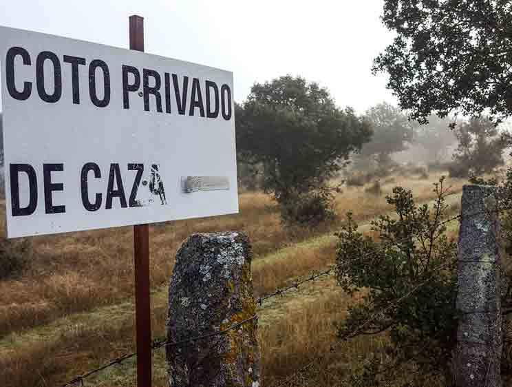 La Federación acuerda una solución que impedirá que la caza se suspenda en Castilla y León
