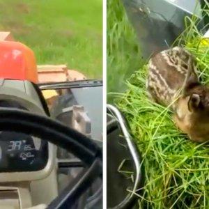 El gesto de este agricultor al encontrar un pequeño corzo arranca los aplausos de los cazadores