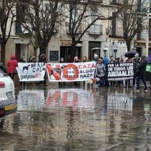 Estrepitoso fracaso de las manifestaciones contra la caza en toda España