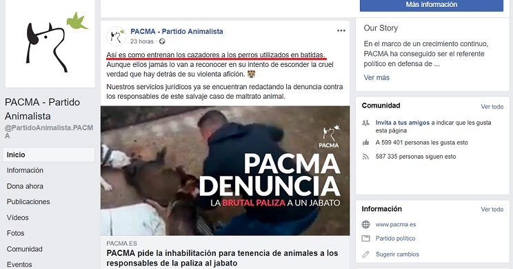 jabalí PACMA