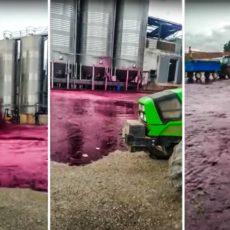 Esto es lo que pasa cuando revienta un depósito con 50.000 litros de vino