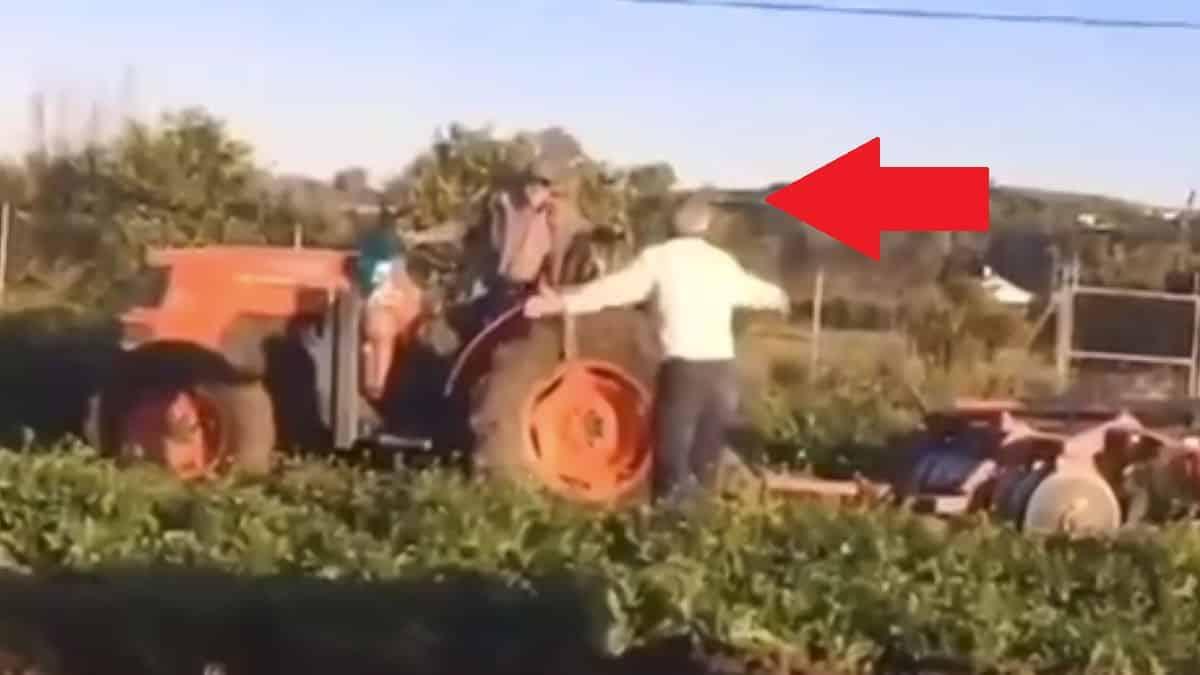 Esta es la discusión entre dos agricultores al más puro 'estilo José Mota' que triunfa en las redes