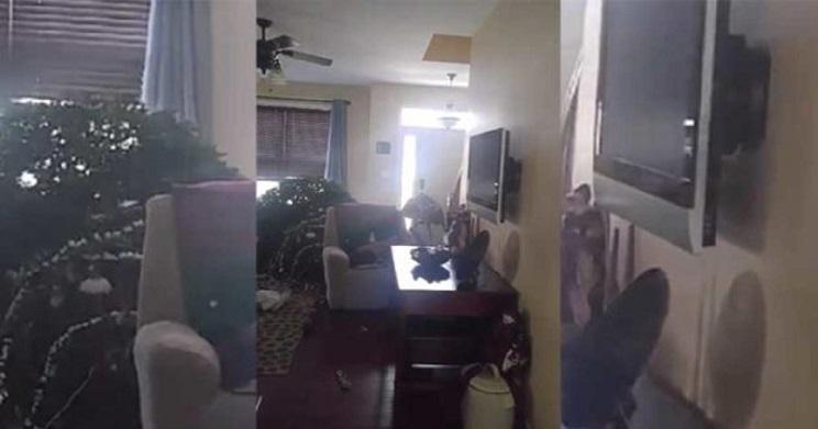 Un ciervo se cuela en la casa de un cazador y su hijo lo abate