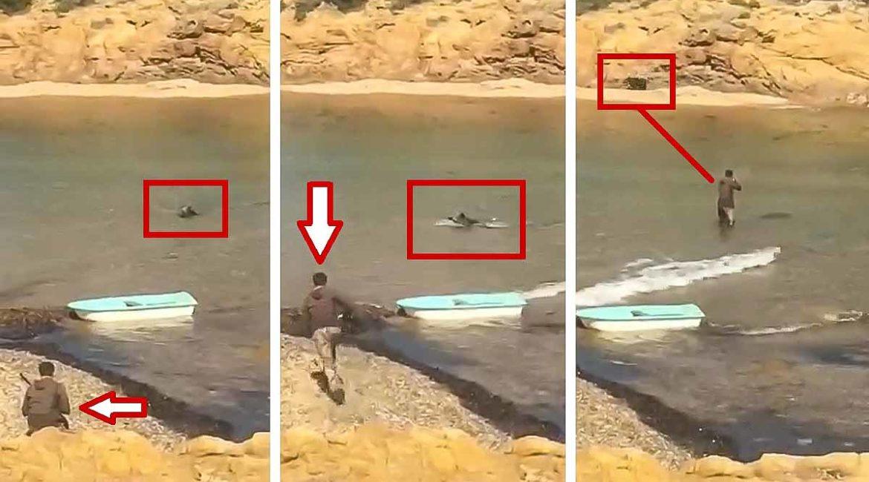 Lance surrealista: intenta dar caza a un jabalí mientras nada en la playa